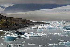 Dia Mundial del Medio Ambiente... 5 JUNIO